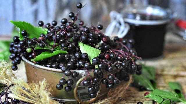 Elderberry: Creative Ways to Incorporate Into Your Diet
