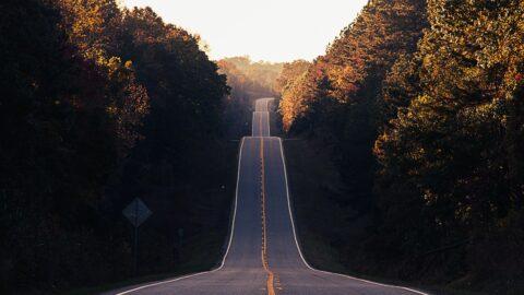 Feeling Stuck? Fall Forward!